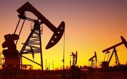 Làn sóng Covid-19 ở châu Âu đang gây áp lực lớn lên giá dầu