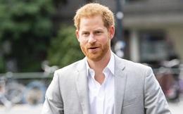 Hoàng tử Harry tìm được việc tại 1 startup ở thung lũng Silicon