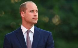 Hoàng tử William được bình chọn là người đàn ông đầu hói 'hấp dẫn' nhất hành tinh