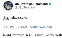 """Bộ Chỉ huy Chiến lược Hoa Kỳ đăng dòng ký tự vô nghĩa """";l;;gmlxzssaw"""" lên Twitter, cư dân mạng đoán ngay rằng có mèo trèo lên bàn phím"""