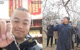"""Nổi tiếng nhờ loạt clip livestream, anh nông dân được mệnh danh """"Vua Táo"""" mở bán khóa học trồng cây trực tuyến và cái kết gây sửng sốt"""