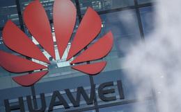 """Chiến lược """"sống sót"""" của Huawei phát huy hiệu quả"""