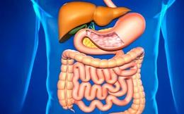 Làm sao để biết cơ thể bị tích tụ độc tố, uống nước trái cây có thể thải độc không, cách nào tối ưu?