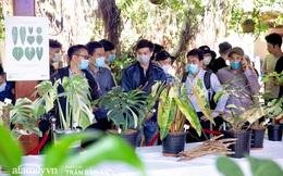 """""""Lác mắt"""" khi tham dự buổi offline hội Kiểng lá tại Sài Gòn, giá trị 1 chiếc lá từ vài triệu đến hàng chục triệu đồng, chính thức mở ra thú chơi siêu tốn kém của dân yêu cây"""