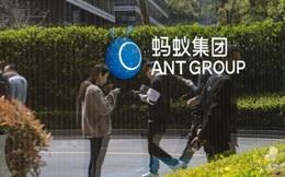 Ant của Jack Ma cho nhân viên vay lãi suất 0% để khích lệ tinh thần