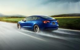 Khoe xe Tesla an toàn gấp 10 lần xe thường, Elon Musk bị bóc mẽ không thương tiếc