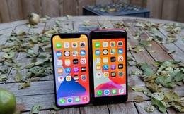 """Không phải vì """"rẻ"""", không phải vì cỡ nhỏ, iPhone 12 Mini thất bại là vì """"sai lầm trong tính toán"""" của Tim Cook"""