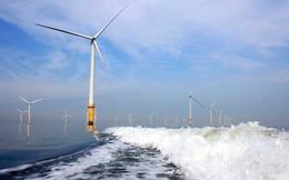 """Việt Nam lọt """"mắt xanh"""" đại gia hàng đầu thế giới về điện gió ngoài khơi nhờ sở hữu điều kiện tự nhiên tốt nhất và phù hợp nhất ĐNÁ"""