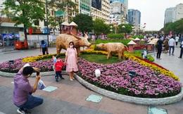 Giá nhà đắt hơn, học phí mắc hơn, vì đâu TPHCM phải nhường vị trí quán quân thành phố đắt đỏ nhất Việt Nam cho Hà Nội?