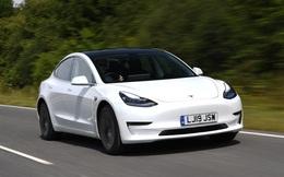 Mỗi ngày, có hơn 2.000 người trên thế giới đặt mua xe Tesla