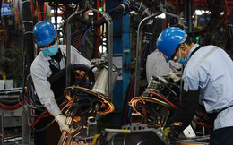 67% doanh nghiệp châu Âu đánh giá triển vọng kinh doanh tại Việt Nam 'xuất sắc'