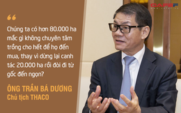 """HAGL Agrico (HNG): Doanh thu giảm phân nửa xuống 260 tỷ sau quý đầu tiên do Thaco """"cầm lái"""", 3 tháng thực hiện 12% chỉ tiêu cả năm 2021"""