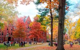 Những bí ẩn chưa được tiết lộ đằng sau cánh cổng Đại học Harvard
