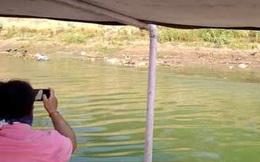 Phát hiện thêm 70 thi thể trôi sông Ấn Độ, phân hủy nặng đến mức không thể xét nghiệm tử thi