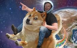 Trước khi khiến giá Bitcoin rớt thảm, Elon Musk hỏi cộng đồng 'Tesla có nên chấp nhận thanh toán bằng Dogecoin không'