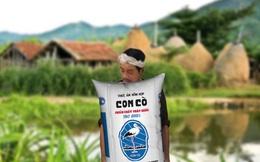 Bloomberg: Masan muốn bán cổ phần mảng thức ăn chăn nuôi