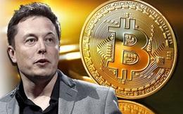 Thị trường tiền số bốc hơi 365 tỷ USD sau tin Tesla quay lưng với Bitcoin