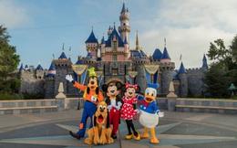 14 bí mật siêu thú vị về những điểm tham quan nổi tiếng nhất của Disneyland