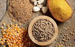Nguyên liệu thức ăn chăn nuôi tăng cao, vì đâu?