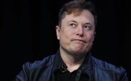 Nhà sáng lập Dogecoin gọi Elon Musk là 'kẻ chỉ biết quan tâm đến bản thân'