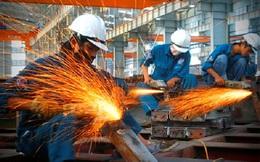 World Bank: Việt Nam có thể cân nhắc 1 gói hỗ trợ quy mô lớn