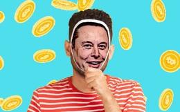 Giới lừa đảo kiếm được ít nhất 2 triệu USD từ người chơi tiền số nhờ mạo danh Elon Musk