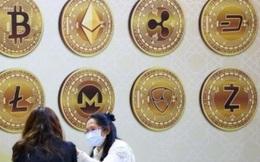 """""""Altcoin"""" đang áp đảo bitcoin nhưng nhà đầu tư hãy cẩn trọng"""
