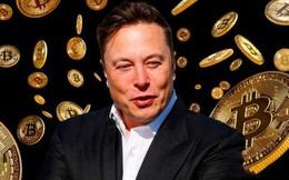 Chuyên gia nhận định Elon Musk chẳng hiểu gì về Bitcoin và hành xử vô trách nhiệm