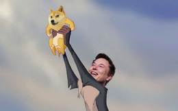 Elon Musk thề trung thành với Dogecoin, giá đồng tiền ảo meme này lại bật tăng mạnh mẽ