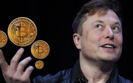 Wall Street Journal: Elon Musk là người có tầm ảnh hưởng lớn nhất đến Bitcoin!