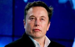 Thế lực Elon Musk đã xoay vần giá Bitcoin như thế nào?