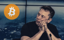 Giới chơi Bitcoin muốn Elon Musk 'trật tự', chuyên tâm vào bán xe ô tô điện