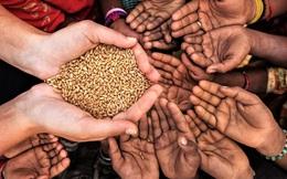 Góc tối ngành công nghiệp từ thiện ở Mỹ: Nhận hàng tỷ USD nhưng chi chưa đến 4% cho người nghèo, 96% còn lại vào túi môi giới, lãnh đạo tổ chức...
