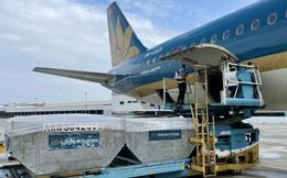 Vietnam Airlines miễn phí vận chuyển vaccine và vật tư tiêm chủng COVID-19