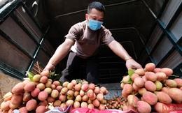 Người dân Hà Nội hào hứng mua vải sớm Bắc Giang