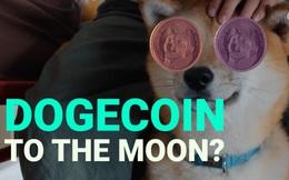 Bóng bóng Dogecoin nổ tung: Giá trị giao dịch có ngày giảm 93%, các 'cá voi' nắm giữ nhiều nhất lo sợ