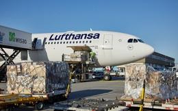 """Vận tải hàng hóa """"cứu"""" ngành hàng không châu Âu"""