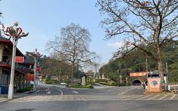 4/5 chuyên gia Trung Quốc dương tính với SARS-CoV-2 sau khi trở về từ Việt Nam