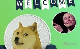Dogecoin lập đỉnh mới trước talkshow của Elon Musk