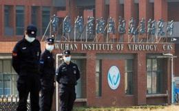 """Trung Quốc: """"Không nên chính trị hóa vấn đề nguồn gốc SARS-Cov-2"""""""