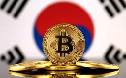Bong bóng tiền số sụp đổ khiến giấc mơ đổi đời của giới trẻ Hàn Quốc tan vỡ