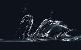 """""""Thiên nga đen"""" - chiến thuật thay đổi tư duy toàn diện trong thời đại mới"""