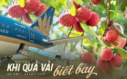 """""""Nhờ"""" COVID-19, vải thiều được """"ngồi"""" siêu máy bay, tự tin nói không với 2 từ """"giải cứu"""", thể hiện bản lĩnh Việt ngay trong """"bão dịch"""""""