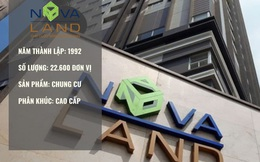 """Hồ sơ Novaland – Huyền thoại của thị trường bất động sản miền Nam, quỹ đất dồi dào, M&A như """"đi chợ"""""""