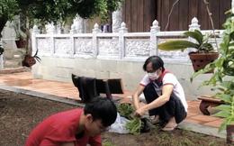 Giữa lùm xùm tiền từ thiện 14 tỷ đồng, xôn xao hình ảnh NS Hoài Linh tiều tụy ở nhà thờ Tổ