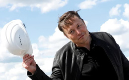 Chán làm giá Bitcoin, Elon Musk tweet nhắc tới bài hát tỷ view Baby Shark, cổ phiếu công ty chủ quản lập tức tăng