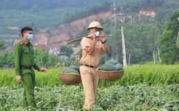 Bắc Giang: Đoàn viên thanh niên công an huyện Yên Dũng thu hoạch 8,5 tấn dưa cho bà con nông dân