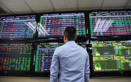 Nhiều nhà đầu tư chứng khoán bị phạt hàng chục triệu đồng vì vi phạm công bố thông tin