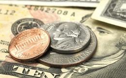 Tại sao chân dung trên tiền xu thường là hình bán diện trong khi tiền giấy là trực diện?