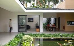 Gia đình 3 thế hệ với cuộc sống an yên trong ngôi nhà rợp mát bóng cây ở ngoại ô Sài Gòn